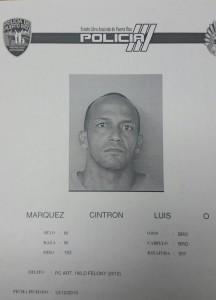 Luis O. Márquez Cintrón