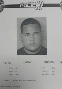 Ficha Steven M. Perez Laboy