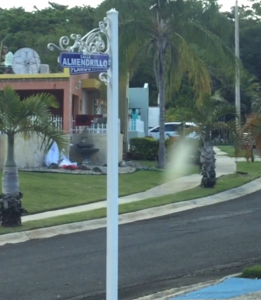 CalleAlmendrilloNaguabo