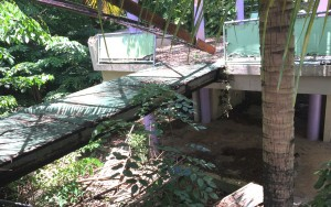 ParqueGuaynabo1