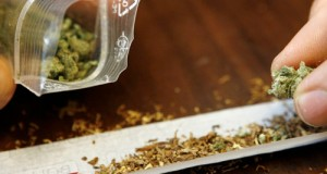 marihuana-sintetica
