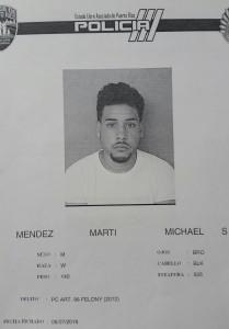 Ficha Michael S. Mendez Marti