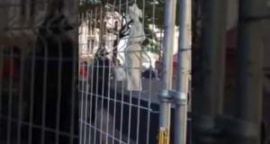 arresto de joven estatua